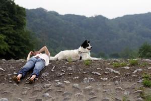 羽村で犬と川遊び