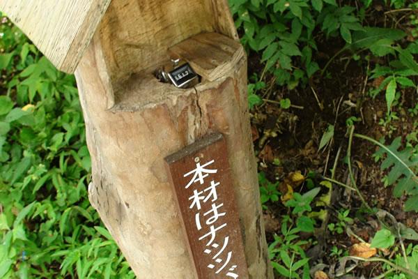 犬と行く 払沢の滝と秋川BBQ公園