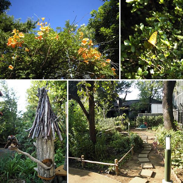 トトロの住む家(Aさんの庭)